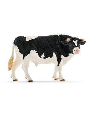 牛セットを見る
