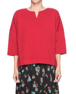 RED  スキッパーTシャツを見る