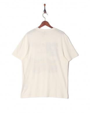 オールドホワイト  Tシャツを見る