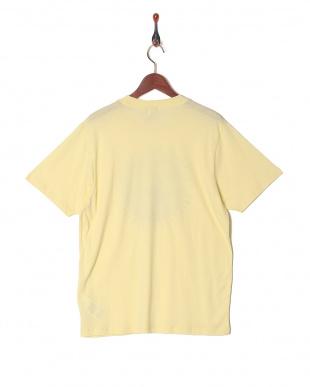 テディグリーン Tシャツを見る