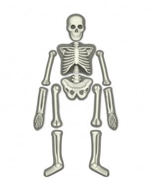 モールド&ペイント 人体骨格グローを見る