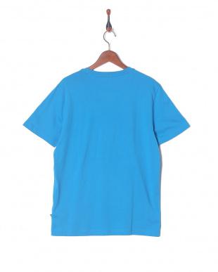 INDIGO BUNTING PUMA SP エクゼキューション SS Tシャツを見る
