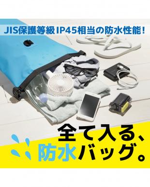 ブルー 防水・防塵バッグ/ドライバッグ/Lサイズ/10Lを見る