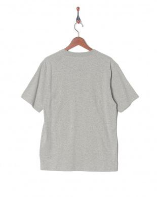 グレー ELEMENT TシャツSSを見る