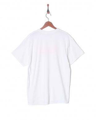 ピンク CHECKER TシャツSSを見る