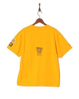 GOLD CLOVER T-SHIRTを見る