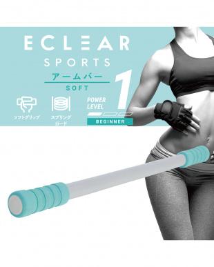 ライトブルー 「アームバー/トレーニングブック付き」  ビギナー/初心者でも扱いやすい/エクリアスポーツを見る