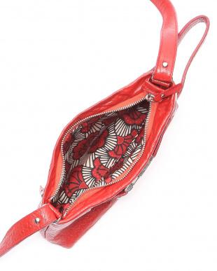 レッド  9: バッグを見る