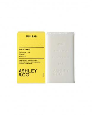 ASH ソープ MiniBar ツイ&カヒリ 90g&ASH ソープ MiniBar パラキーツ&パールズ 90gを見る