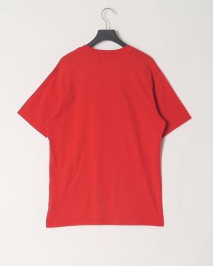 バルバドスレッド/ミューテッドグレイ  Basic Logo T-shirtを見る