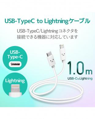 ホワイト 「USB C-Lightningケーブル」 高速充電/1.0mを見る