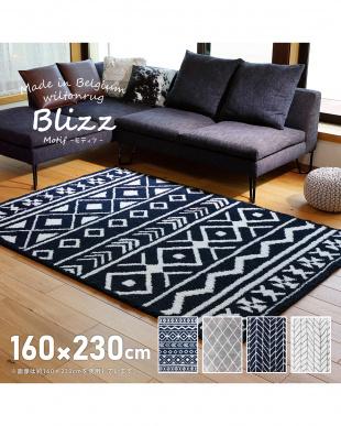 ベルギー製ウィルトンラグ BLIZZ モティフ 160×230を見る