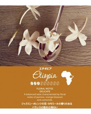 イリー アラビカセレクション エチオピア豆を見る