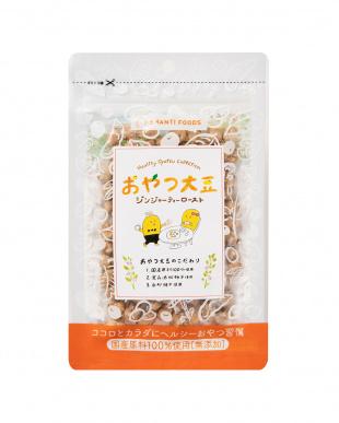 『添加物不使用&国産原料100%  女性に嬉しい栄養素が豊富』おやつ大豆 ジンジャーティーロースト 6袋セットを見る
