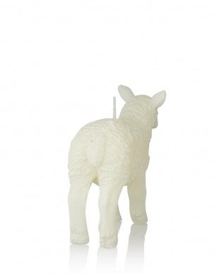 SHEEP キャンドル カーム(L)を見る