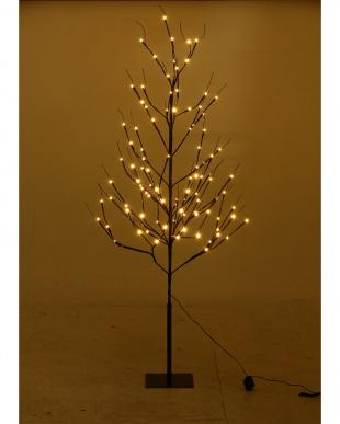 LEDブランチツリー ブラック 150cmを見る
