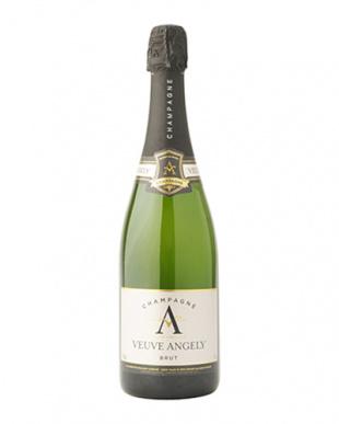 豪華シャンパン入  フレンチスパークリング3本セットを見る
