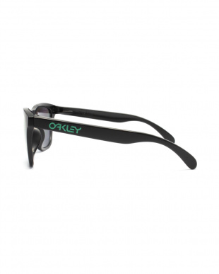 Matte Black/Emerald Iridium Polarized FROGSKINS サングラスを見る