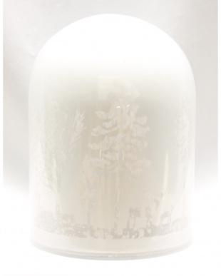 WHITE  ガラスドームを見る