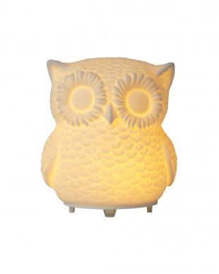 ホワイト AROMA DIFFUSER OWL(MIST) WH SMAR-004-WHを見る
