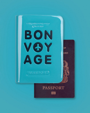 rose BV PASSPORT COVERを見る