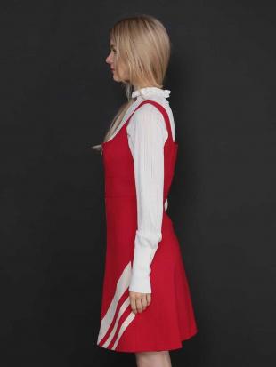 レッド スリーラインノースリーブドレス TARA JARMONを見る