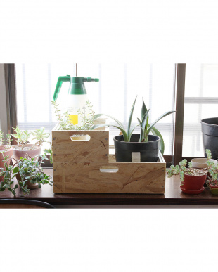 WH GENERAL BOTANICAL TOOL BOX Lを見る