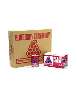 ブルーベリー&クランベリー30缶(1ケース)を見る