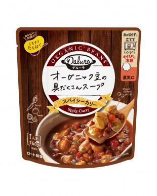 ダルーラ「スパイシー温活スープ2種計12袋」マグカップ付を見る