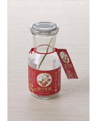 梅の日本酒カクテル 2個セットを見る