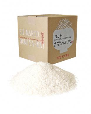 『まとめ買いがお買い得!』四万十のお米5kg 2袋(白米)を見る