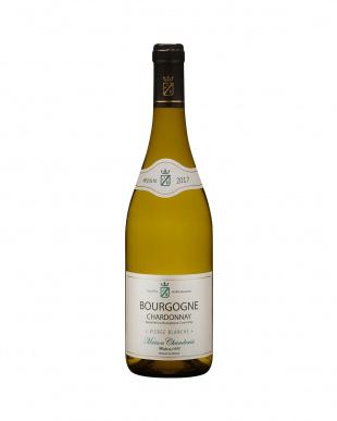 ブルゴーニュを含む旧世界白赤ワイン満喫10本セットを見る