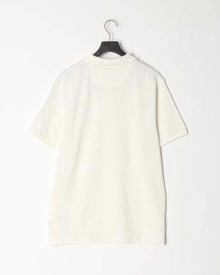 PICKET FENCE TFO AF SS MlRv Solid Polo Pickを見る