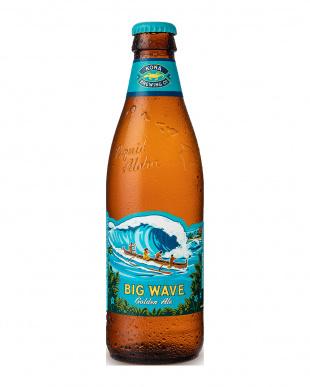 『希少ホップ「ギャラクシー」使用』コナビール ビッグウェーブ ゴールデンエール瓶×6本を見る