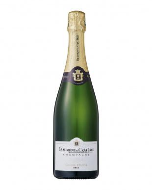 高品質スパークリングの代名詞 シャンパーニュとフランチャコルタ飲み比べセットを見る