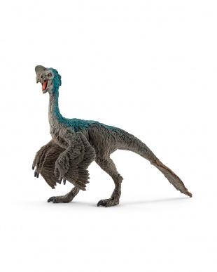 恐竜4種セットを見る