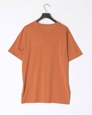 430  LUXE COTTON JSY PRECISE T クルーネック 半袖Tシャツを見る