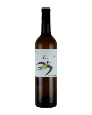 『カタルーニャナチュラルワインの飲み比べ』 赤白4本セットを見る