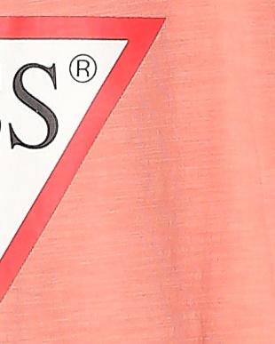 ピンク SS GUESS CLASSIC TRI OG TEEを見る