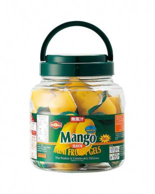マンゴー味ゼリー(500g) 2個セットを見る