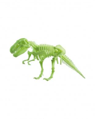 EDU-SCIENCE グロー恐竜骨格シリーズ 3種セットを見る