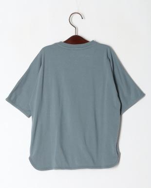 ブルー 30/-テンジク ポケットTシャツを見る