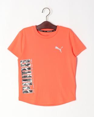 23/06 ACTIVE SPORTS グラフィック Tシャツ/ACTIVE SPORTS ウーブン ショーツを見る