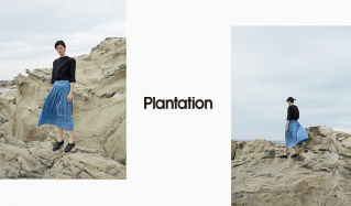 PLANTATIONのセールをチェック