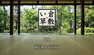 倉敷のい草 MADE IN JAPANのセールをチェック