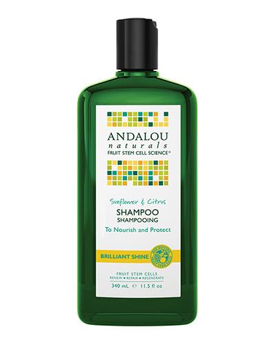 Anda Lou Naturals / SC Brilliant Shine Shampoo