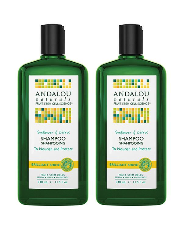 Anda Lou Naturals / SC Brilliant Shine Shampoo × 2 Set