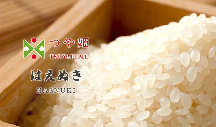 精米をすぐにお届け!お米農家直送 つや姫・はえぬき  -特別栽培米-