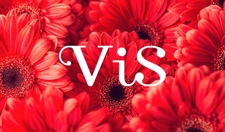 VIS(ビス)