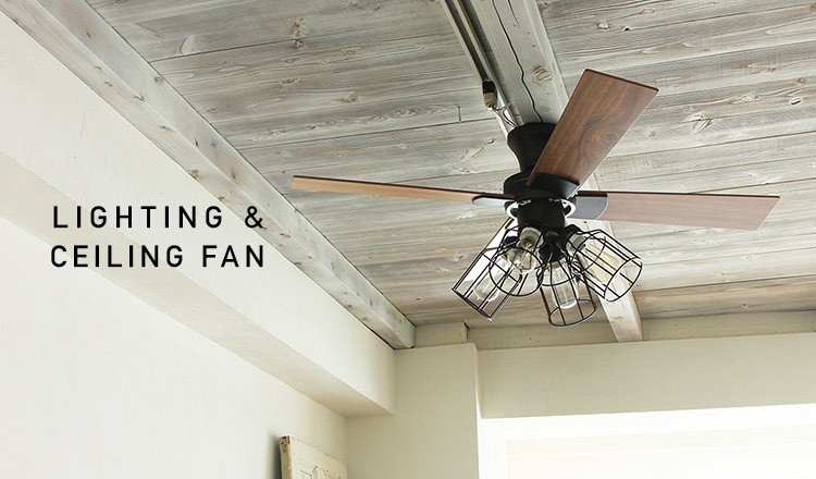 LIGHTING & CEILING FAN